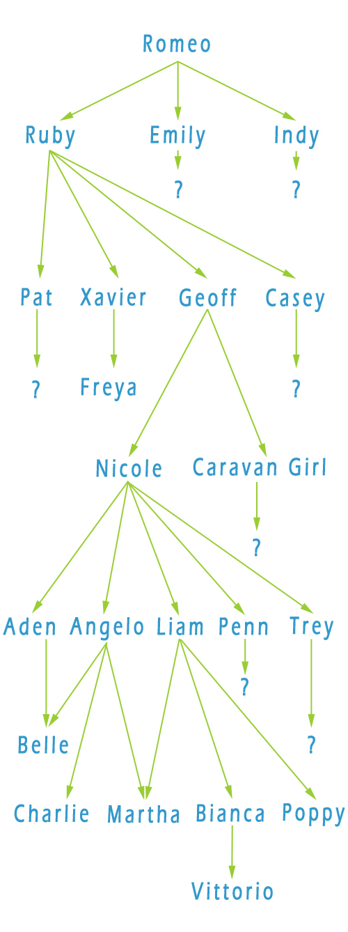 STD tree 6